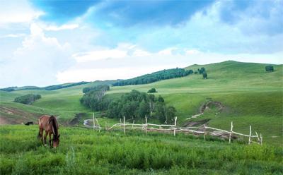 内蒙古冬季旅游bob体育官方平台-旅游专题片制作-旅游广告片