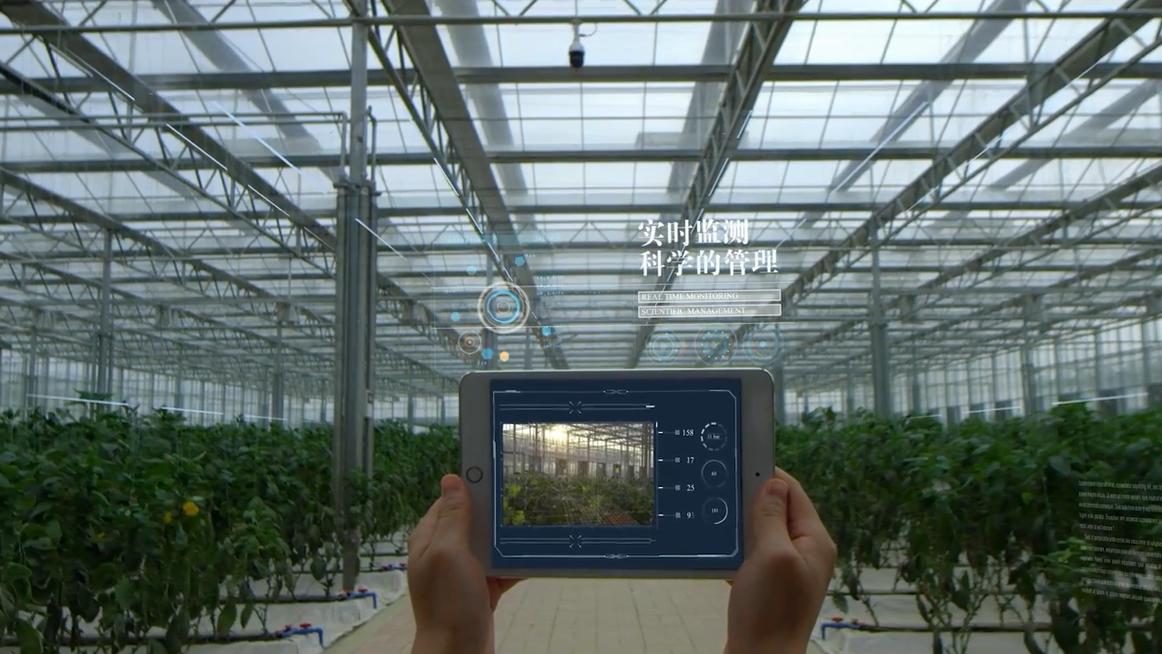 工创智慧农业 乐天堂国际