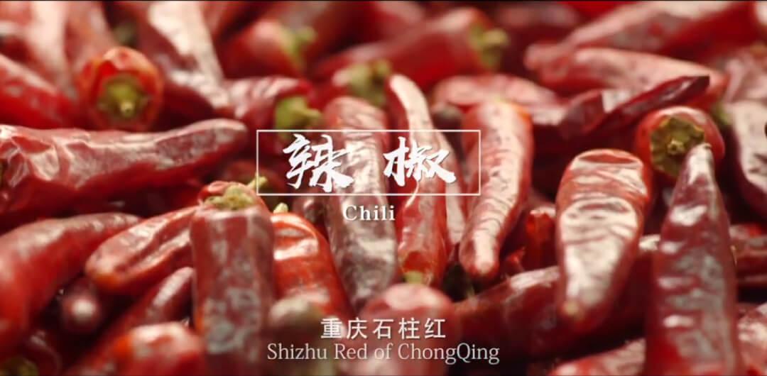 重慶 城市形象片