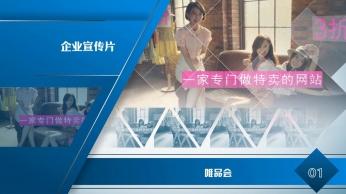 高层人物介绍 - 企业实力bob体育官方平台