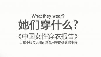 珍品网 - 企业APP宣传广告