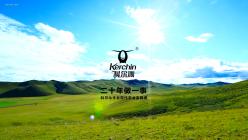 科尔沁牛业纪录片