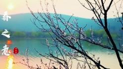 春之意纪录片