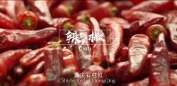 重庆 城市形象片